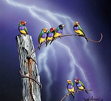Rainbows after the Storm by John  Murray