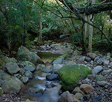 Downstream by Steve Randall