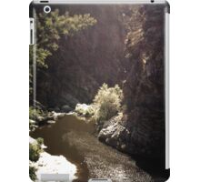 River [ iPad / iPod / iPhone Case ] iPad Case/Skin