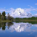 Mount Moran On Oxbow Bend Panorama by Brian Harig