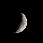 Quarter Moon by Matt Sillence