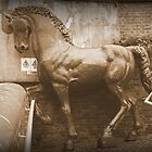 Iron Horse in The Rain by Ed Sweetman