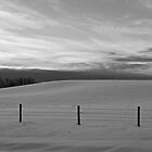 Winter Landscape - Peaceful B&W Alberta, Canada by Jessica Karran
