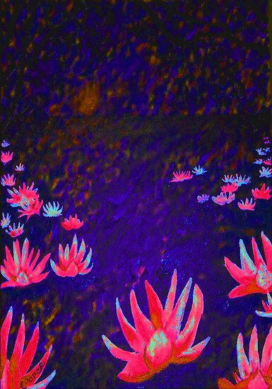 """Lotus Flowers at Sunset"" by Kevin J Cooper"