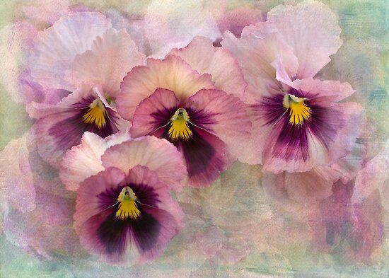 pretty maids all in a row by Teresa Pople