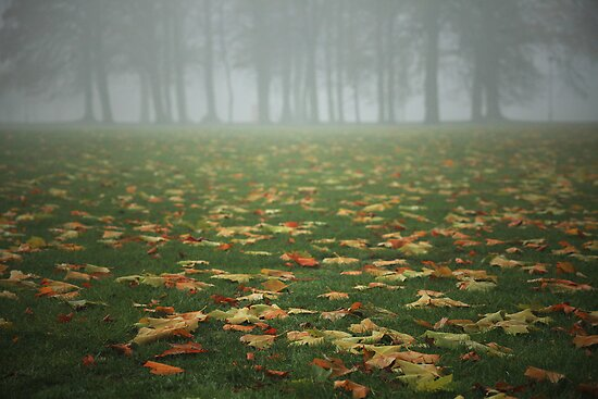 Autumn's Carpet by Ursula Rodgers