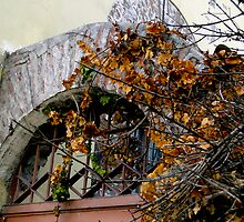 Rustic El Vergel Transom by Al Bourassa