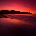Port Jackson sunset IV by Paul Mercer