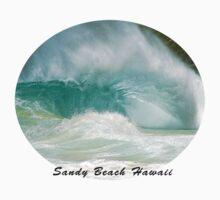 Obama's Bodysurfing Beach by kevin smith  skystudiohawaii