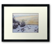 Bellever Forest Oil on Canvas Framed Print
