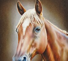 Horse Portrait by lanadi