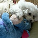 coco with eeyore by Neroli Henderson