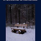 A Christmas to Remember - eBook by SophiaDeLuna