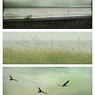 By the sea by Anne Staub