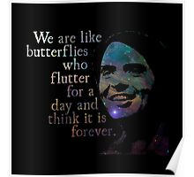 We Are Like Butterflies - Carl Sagan Poster