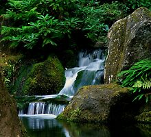 Japanese Serenity ~ Part Two by artisandelimage