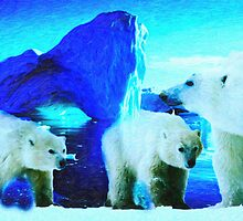 polar bears 2 by Adam Asar