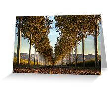 Country Entrance Greeting Card