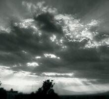 ©HCS Sunhsine VIII by OmarHernandez