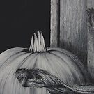 Pumpkin by RachaelSelk