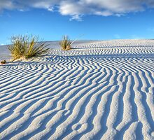 White Sands Blue Sky by Bob Christopher