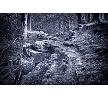 The Rugged Path Photographic Print