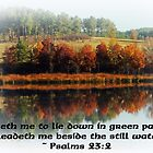 Beside The Still Waters With Verse by Betty Northcutt