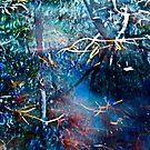 Billabong blues by LouD