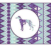 Greyhound Geometri Photographic Print