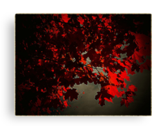 Fall of the dark..fractured mirror Canvas Print