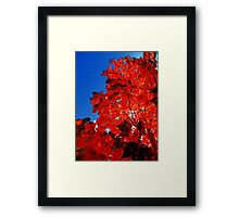 Hotter than hell, Burn you like the midday sun Framed Print