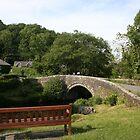 Village Bridge by Seaxneat