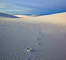 Footprints by DawsonImages