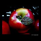 Red McIntosh Apple With A Dry Leaf  by © Sophie Smith