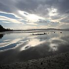 Bruny Island by PenguinSands