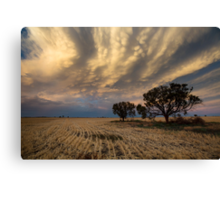 Baradine Sunset Canvas Print