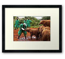"""Slow Coach"": Last Little Elephant to Finish Feeding Framed Print"