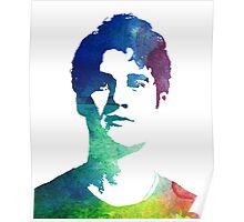 rainbow headshot Poster