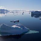 Reflecting on Antarctica 064 by Karl David Hill