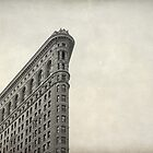 Flatiron Building NYC by Fern Blacker