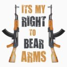 right to bear arms by red-rawlo