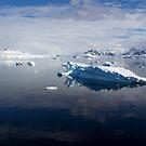 Reflecting on Antarctica 069 by Karl David Hill