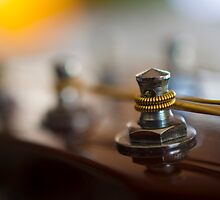 Guitar tuning pegs by Haz Preena