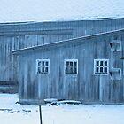 This old barn by Liesl Gaesser