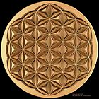 Flower of Life by David M. Voutsinas
