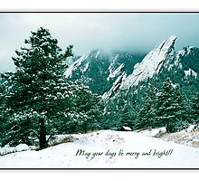 May Your Days Be Merry And Bright by Greg Summers