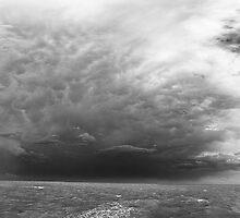 Woody Point, Queensland, Australia. by Matt Duncan