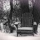 The Chair Under the Tree by Dlouise
