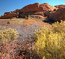 Red Rocks Park Afternoon by Michael Kirsh