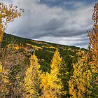 Colorado Squaw Pass Autumn by Michael Kirsh